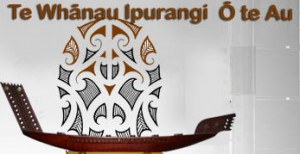 Maori Internet